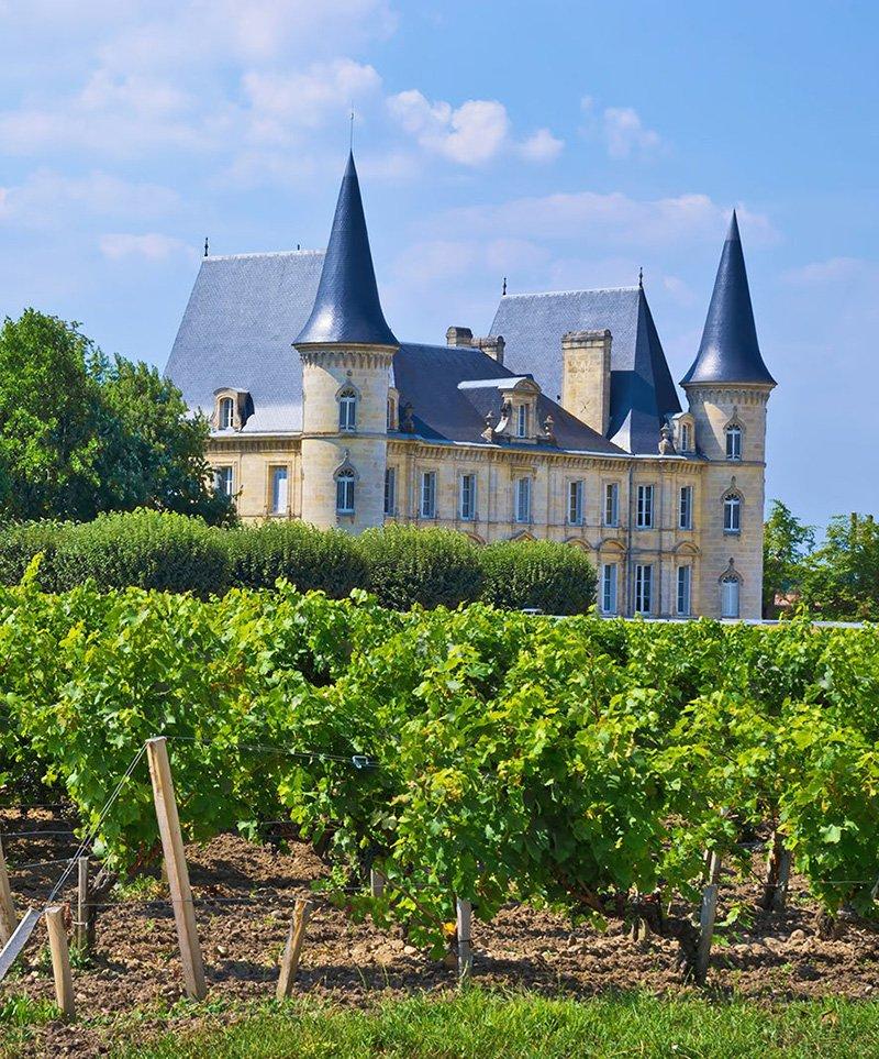 Excursion guide touristique vignobles du Médoc